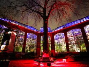 Amsterdam Light Festival 2013 – 2014 Timelapse