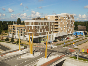 Wijkvernieuwing Hogekwartier Amersfoort: Achtjarige timelapse